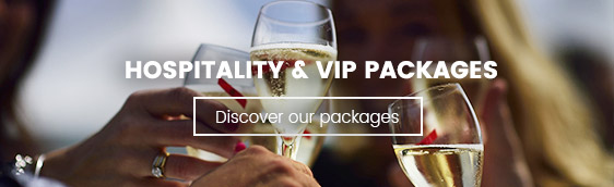 Hospitality VIP - 2019 Rugby World Cup in Japan  - Couleur Voyages